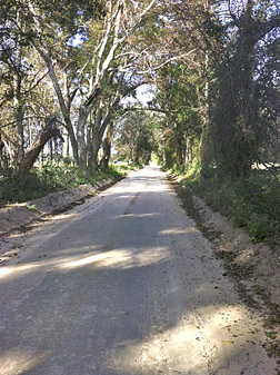 W_-_Conrad_graded_road_copy
